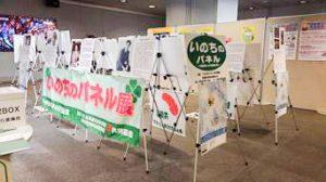 11月10~15日札幌地下街 オーロラスクエアでのパネル展