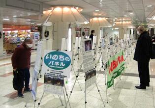 写真は、札幌地下街オーロラスクエアでの「いのちのパネル展」(2020年11月13日)